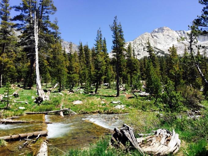 SHR Return Creek