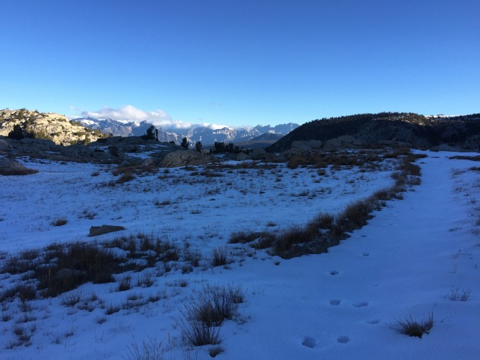 Once over Granite Pass I was north of the Monarch Divide, and a new view opened up. I followed animal tracks. 8:03am