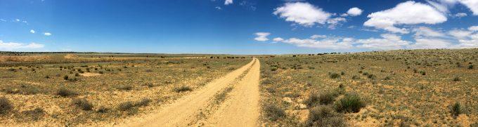 arizona strip 2016 cattle